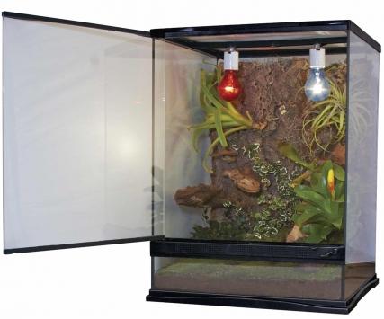Glass Naturalistic Terrarium Inch 12X12X18