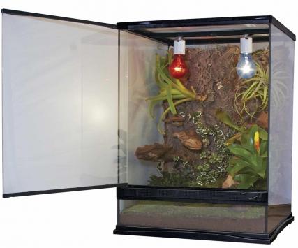 Glass Naturalistic Terrarium Inch 18X18X18